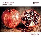 Meraviglia D'Amore / Marco Beasley