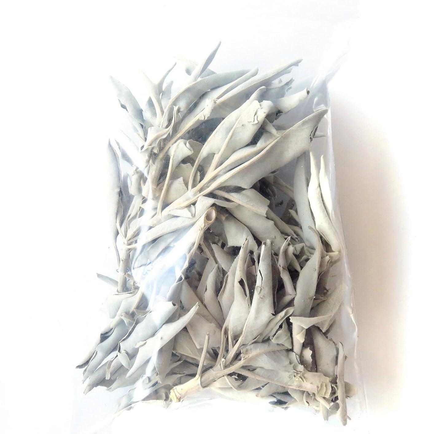 高揚した効能時々ホワイトセージ 無農薬 カルフォルニア産 30g前後 (枝付き)