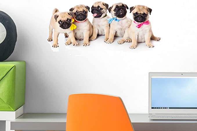 Wallmonkeys Five Puppies Pug Wall Decal Peel And Stick Graphic 18 In W X 12 In H Wm44125 Furniture Decor