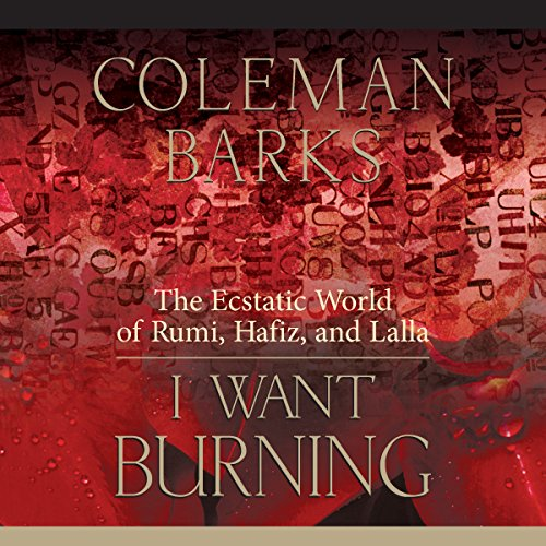 I Want Burning audiobook cover art