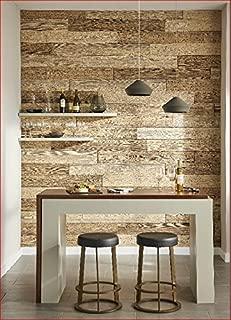 Decorative Panels International, Inc. Rustic Wall Planks by DPI, Driftwood (Light)