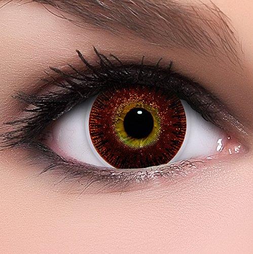 Circle Lenses goldene 'Golden Brown' ohne Stärke + Behälter 14,50mm farbige Kontaktlinsen