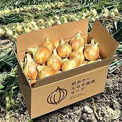 淡路島 玉ねぎ 6kg+ご愛顧感謝1kgおまけ+健康生活応援1kg追加 玉葱 たまねぎ 2020年 減農薬 サイズ・個数 お任せ【農家直送 限定販売 中手品種】