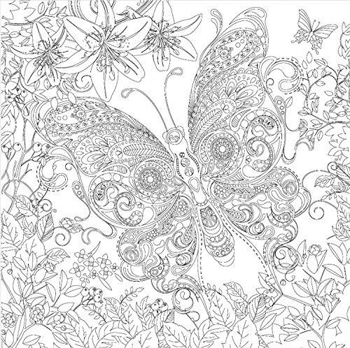 Honsell 12126 Keilrahmen mit Schmetterling, Format 30 x 30 cm, Vorgedrucktes Motiv zum Ausmalen mit Acryl, Aquarell-und Ölfarben und Filz-und Farbstifte, weiß