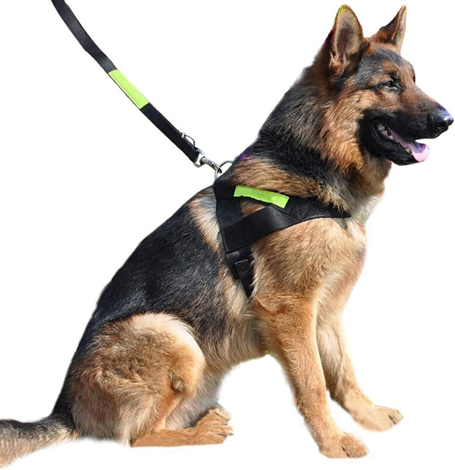 JIANXIN Dog Leash, Dog Collar, TwoPiece Suit, Suitable for Medium and Large Dogs, 2 Sizes (Size   L)