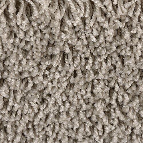 BODENMEISTER BM72231 Teppichboden Auslegware Meterware Hochflor Shaggy Langflor Velour grau beige 400 und 500 cm breit, verschiedene Längen, Variante, 2 x 5 m