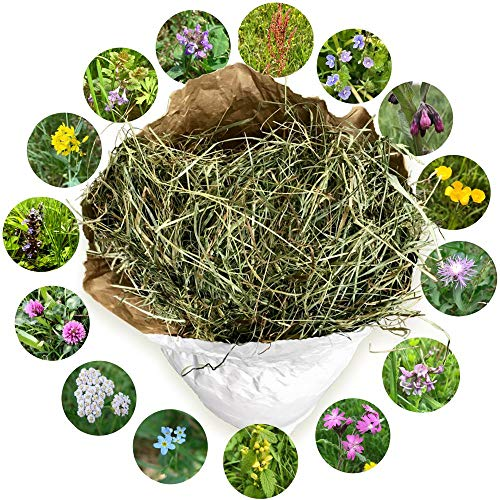Jumbogras® NATURHEU 1. Schnitt: Qualitäts-Kleintier-Futter, Heu für Kaninchen/Hasen & Nager - lose im Papiersack aus der größten Heumilch-Region Europas in Österreich (~1 kg)