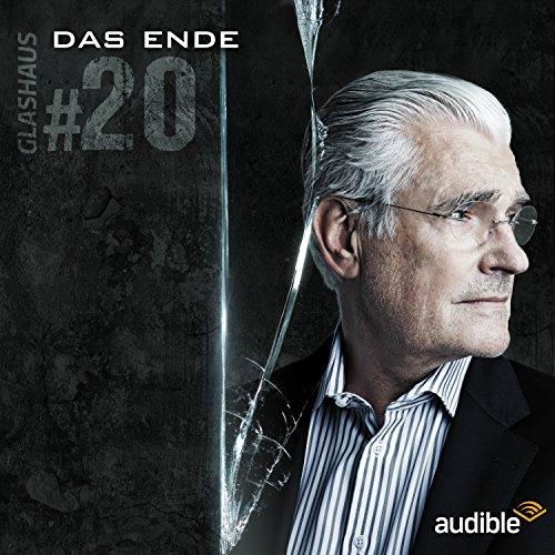 Das Ende audiobook cover art
