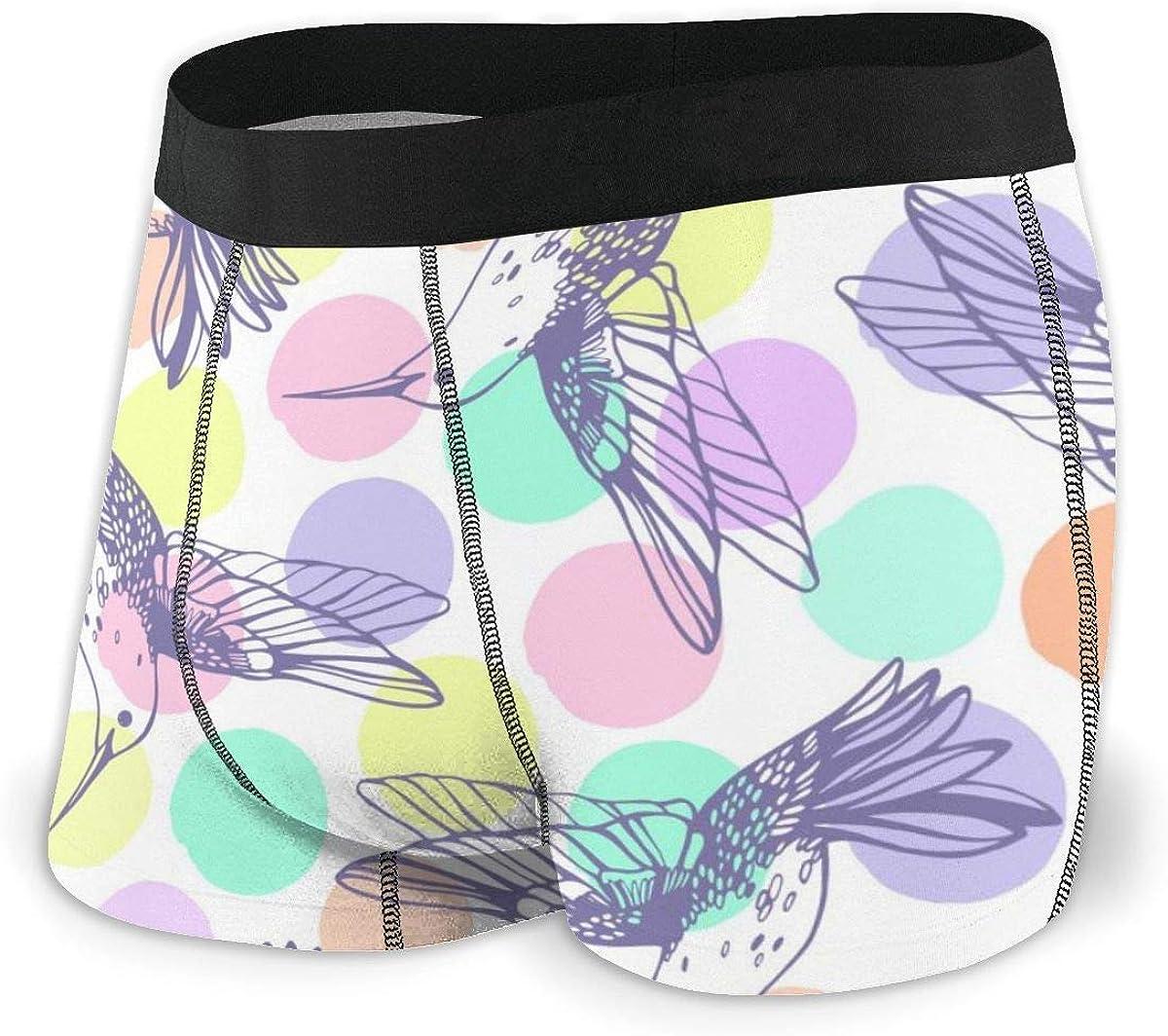 Mens Boxer Briefs Hummingbird Birds Animal Boys Trunks Underwear Short Leg Breathable Man