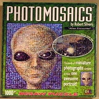 Photomosaics by Robert Silvers