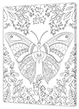 Pintcolor 7160.0– Marco con Lienzo Impreso para Colorear, Madera de Abeto/algodón, Blanco/Negro, 40x 50x 3,5cm