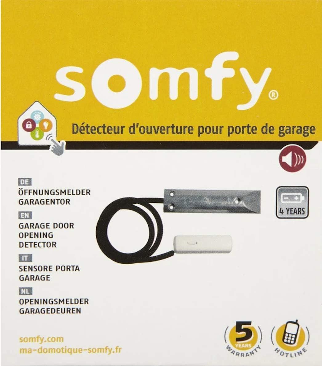 wei/ß /Protexial Funk-/Öffnungsmelder f/ür Rollladen Somfy 2400438