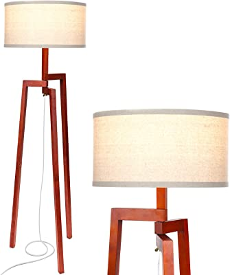Decoluce Floor Standing Lamp Tripod Modern Minimalist ...
