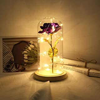 CapsA Gold Foil Rose Flower Lamp Great Gift for Mother Festival Birthday Glass Cover Led Micro Landscape Romantic Simulation Rose for Home Decoration