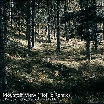Mountain View (FloFilz Remix)