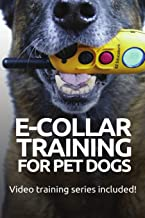 Best e collar dog training Reviews