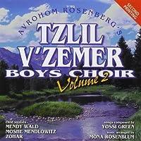 Vol. 2 by Tzlil V'Zemer Boys Choir