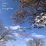 Dreamwalk in Orange