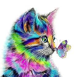 Fuumuui DIY Malen Nach Zahlen, DIY Digitale Leinwand Ölgemälde Geschenk für Kinder, Studenten, Erwachsene Anfänger- Katze und Schmetterling 16 * 20 Zoll