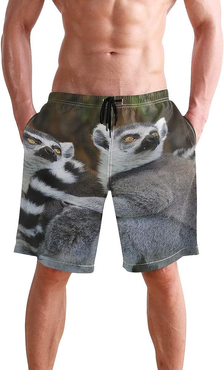 Mens Shorts Animals Lemurs Wild Nature Basketball Short Sleep Trousers for Boys