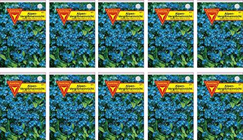 Frankonia-Samen / Vergißmeinnicht / Blumensamen / Myosotis alpestris / /blau / 10er Pack / ergibt bis zu 500 Pflanzen / zweijährig