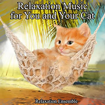 Relaxation Music for You and Your Cat