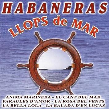 Havaneres Vol.2