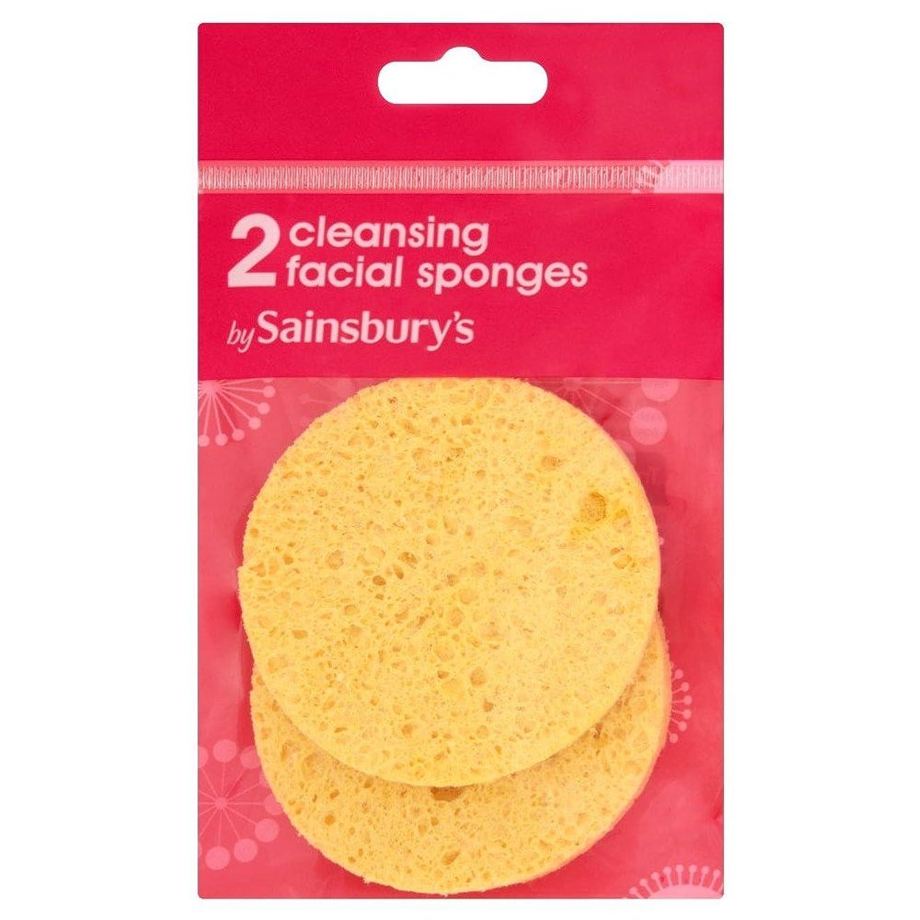 多年生調整旅行者Sainsbury's Exfoliating Sponge x2 (Pack of 6) - (Sainsbury's) ピーリングスポンジ×2 (x6) [並行輸入品]