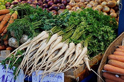 1000 Hambourg Rooted Persil Petroselinum Crispum Chine Racine Graines de légumes