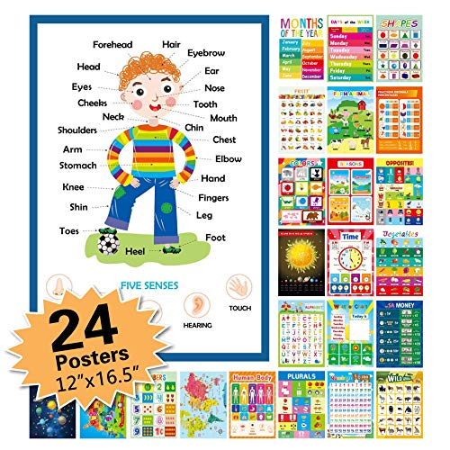 """24 Pack Educational Posters for Preschool Classroom Decorations and Decor Earply Learning Chart for Nursery Homeschool Kindergarten Classroom (12""""X16.5"""")"""