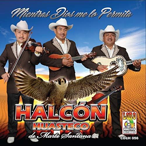 Halcón Huasteco de Marte Santana