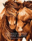 The Wild Horses of Sable Islands, Roberto Dutesco: The Wild Horses of Sable Islands -promo- (Photographer)