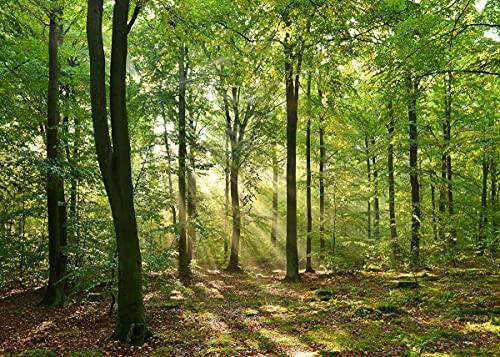 papermoon Papel pintado fotográfico verde 23363