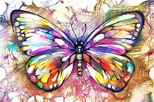 WHXJ Diamond Painting Kit Completo, Dibujo de Diamante 5D, Mariposas Multicolores, 12x16inch, Pintura de Diamante para Principiantes, decoración de la Pared del hogar