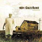 Songtexte von The Buzzhorn - Disconnected