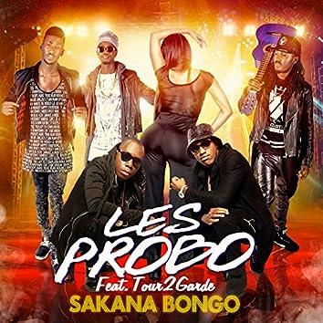 Sakana bongo