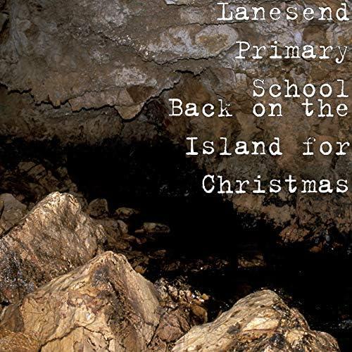 Lanesend Primary School