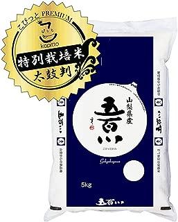 【精米】新ブランド米 山梨県産 特別栽培米 「A」受賞(実績) 無洗米(袋再利用) 白米 五百川 5kg(長期保存包装)x1袋 令和元年産 新米