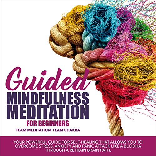 Guided Mindfulness Meditation for Beginners cover art