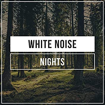 White Noise Nights