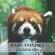 Baby animals: 2021 Wall Calendar - Mini size 7 x 7 Inch - 12 Months