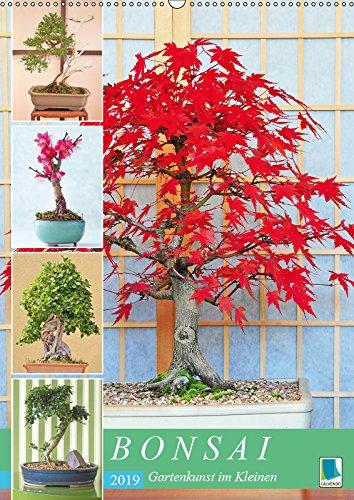 Bonsai: Gartenkunst im Kleinen (Wandkalender 2019 DIN A2 hoch): Japanische Gartenkunst Bonsai (Monatskalender, 14 Seiten )