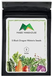 5 Black Dragon Wisteria Seeds Vine Climbing Flower Perennial Rare Tropical Red