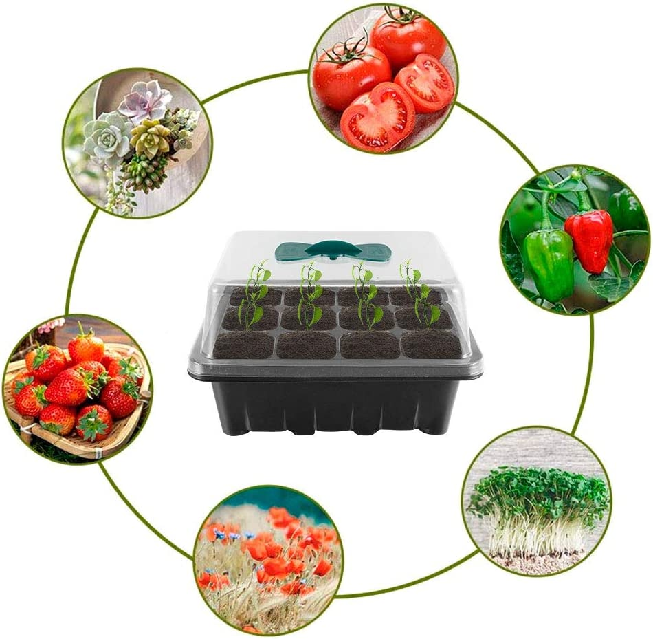 for Seed Starting and Growing 12-Cell Schwarz Gardening Germination Tray with Adjustable Vents Plant lables /& Hand Tool kit Yous Auto 3 St/ück Zimmergew/ächshaus Anzuchtkasten 12 L/öcher, 3 S/ätze