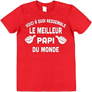 """/""""This Is What An Awesome Computer Geek ressemble/"""" Noël Anniversaire Drôle T-Shirt"""