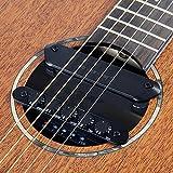 Skysonic R2 - Pastilla de resonancia para guitarra con pastilla magnética, pastilla de micrófono, reverb, coro, retardo, dispositivo de recogida multifunción