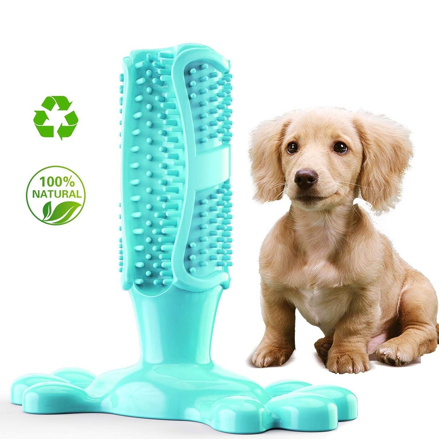 接続詞送った幻滅する中型犬玩具、歯ブラシ、犬、ゴム臼歯玩具、レイクブルー