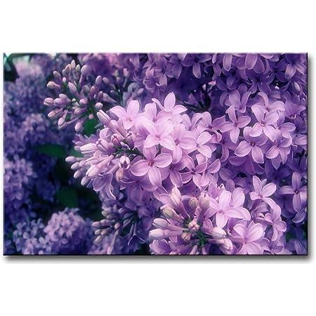 Lilac Wildflower Wall Art