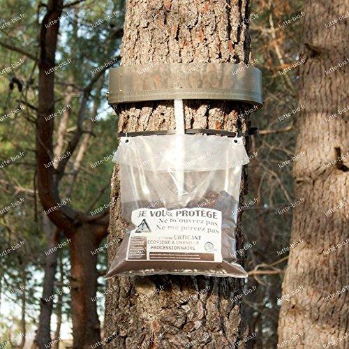 Biotop - Eco-trappola per processionaria del pino, 80cm