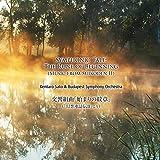 交響組曲「始まりの紋章」(「幻想水滸伝Ⅱ」より) Symphonic Tale: The Rune of Beginning (Music from Suikoden II) [並行輸入品]